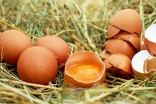 Яйца за изгаряне на коремни мазнини